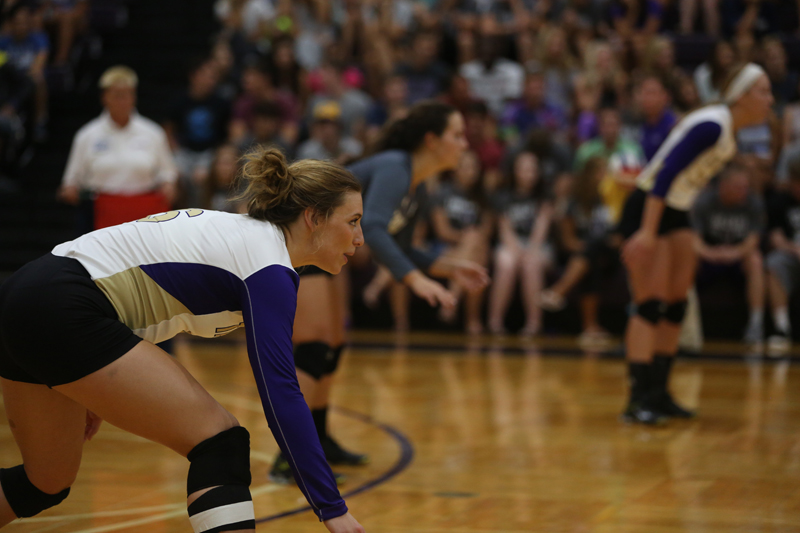 31st Volleyball Sweeps HU in Home Opener Photo