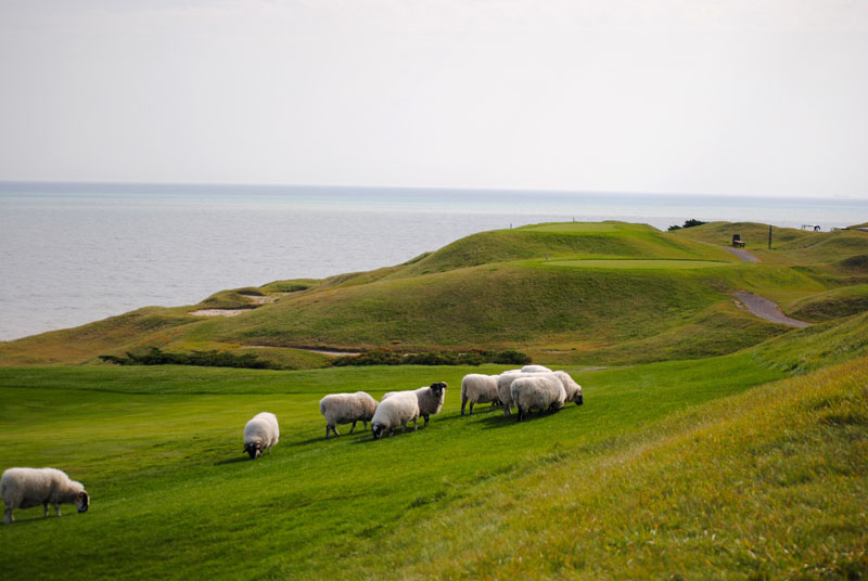 28th Men's Golf at Whistling Straits- Day Two Photo