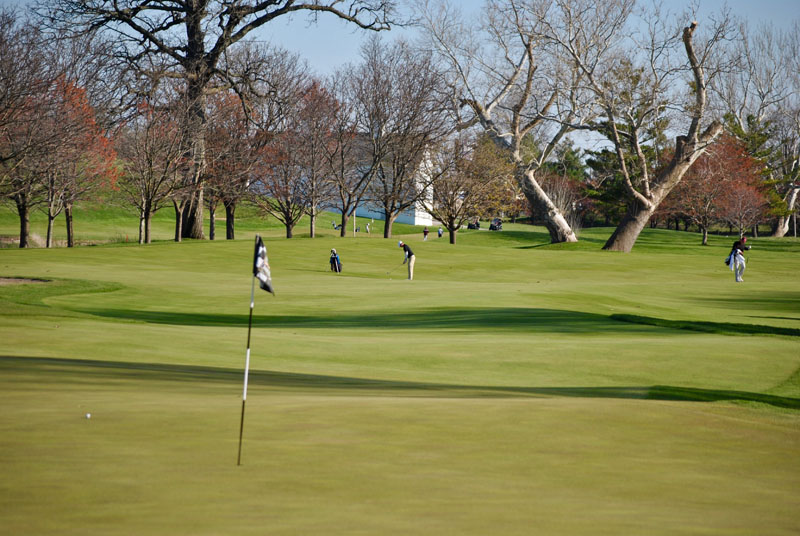 42nd Men's Golf at Wildcat Cup Photo