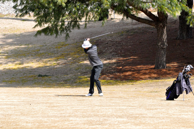 32nd Men's Golf at Trevecca Nazarene  Photo