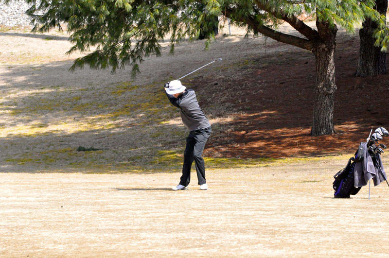 33rd Men's Golf at Trevecca Nazarene  Photo