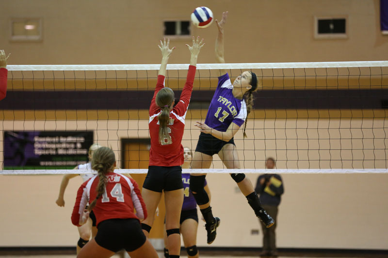 5th Volleyball Sweeps IWU Photo