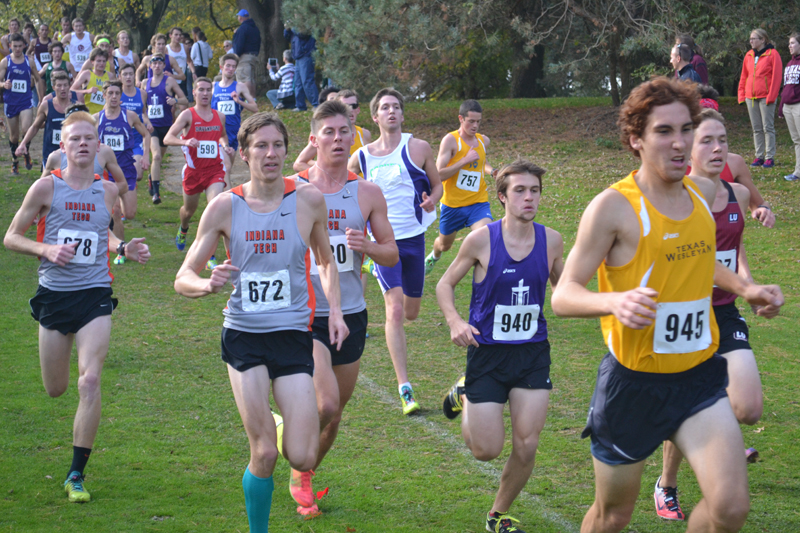 3rd Men's Cross Country at Great Lakes Invite Photo