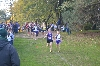2nd Men's Cross Country at Great Lakes Invite Photo