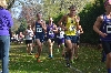 6th Men's Cross Country at Great Lakes Invite Photo