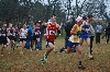 9th Men's CC Takes 15th at Nationals Photo