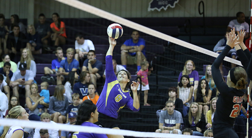 news holly motheral named taylor volleyball coach